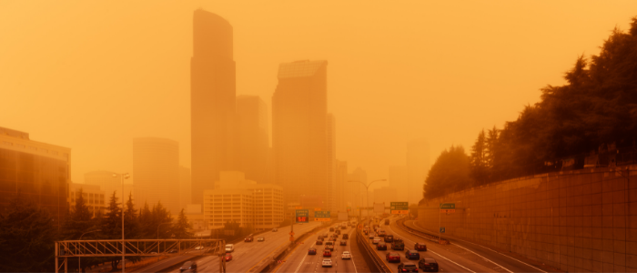 Easing Symptoms Caused by WildFire Smoke